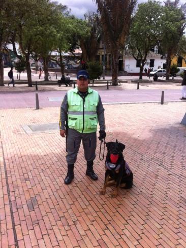 Police Dog in the Parks of Bogota